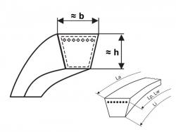 Klínový řemen 20x1550 Li - 20x1600 Lw L=L Profi Rubena