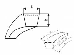 Klínový řemen 13x850 X Li - AX 880 Lw PP Profi-X Rubena